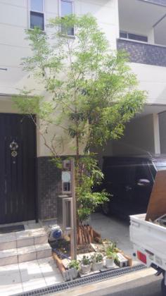 大阪庭作り固まる土作業前